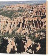 Bryce Canyon Hoodoos And Fins Wood Print