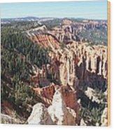 Bryce Canyon Hoodoos Landscape Wood Print