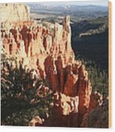 Bryce Canyon Landscape Wood Print
