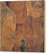 Bryce Canyon National Park Hoodo Monoliths Sunset From Sunset Po Wood Print