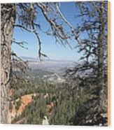 Bryce Canyon Overlook With Dead Trees Wood Print
