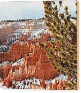 Bryce Canyon Pine Side Wood Print