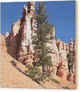 Bryce Canyon Red Fins Wood Print