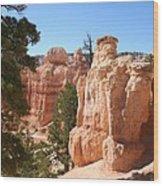 Bryce Canyon  Red Rocks Wood Print