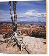 Bryce Canyon State Park Wood Print