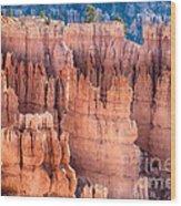 Bryce Canyon Utah Views 90 Wood Print