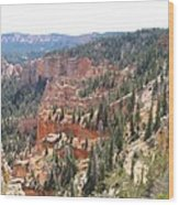 Bryce Canyon View Wood Print