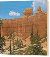 Bryce Canyon Walls Wood Print
