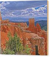 Bryce Canyon's Agua Canyon Wood Print