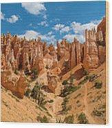 Bryce Hills 3 Wood Print