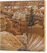 Bryce Zion Landscape Wood Print