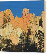 Bryce Canyon Panoramic Wood Print