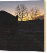 Bse45 Wood Print