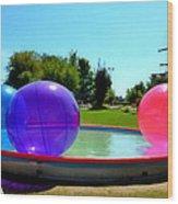 Bubble Ball 1  Wood Print