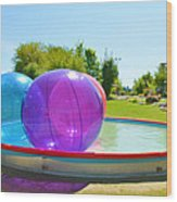 Bubble Ball 2 Wood Print