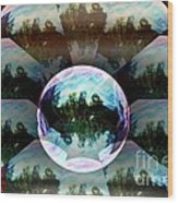 Bubble Illusion Catus 1 No 2 H Wood Print