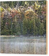 Bubble Pond Acadia National Park Wood Print