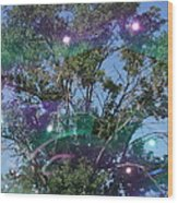 Bubble Tree Wood Print