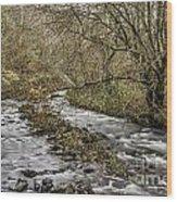 Bubbling Water Wood Print