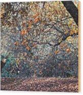 Buck And Fall Foliage Wood Print