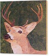 Buck Portrait Wood Print