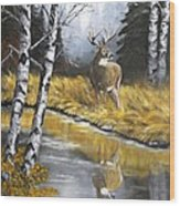 Buck Reflection Wood Print
