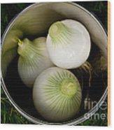 Bucket Of Onions Wood Print by Wilma  Birdwell