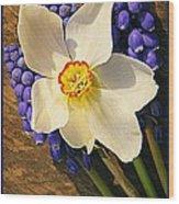 Buckeye And Grape Hyacinth Wood Print