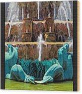 Buckingham Fountain Closeup Poster Wood Print