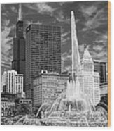 Buckingham Fountain Sears Tower Black And White Wood Print