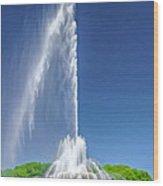 Buckingham Fountain Spray Wood Print