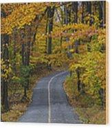 Bucks County Road In Autumn Wood Print