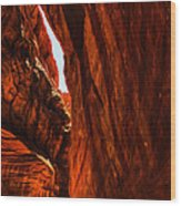 Buckskin Gulch 11 Wood Print