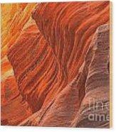 Buckskin Shades Of Red Wood Print