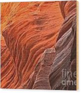 Buckskin Walls Of Fire Wood Print