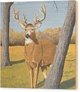 Bucky The Deer Wood Print