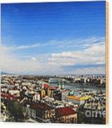 Budapest And Blue Danube Wood Print