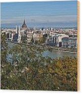 Budapest City Wood Print