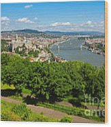 Budapest Panoramic View From The Gellert Hill With Danube River Wood Print