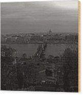 Budapest Wood Print