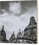 Buddha And Stupas Wood Print