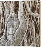 Buddha Head In Tree Wat Mahathat Ayutthaya  Thailand Wood Print by Fototrav Print
