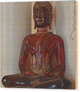 Buddha In Savannah Wood Print
