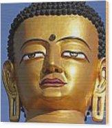 Buddha Statue At The Buddha Park In Kathmandu Nepal Wood Print