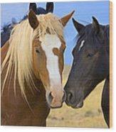 Buddies Wild Mustangs Wood Print