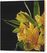 Budding Flowers Wood Print