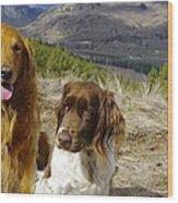 Budds On A Hike Wood Print