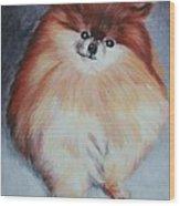Buddy - Pomeranian Wood Print