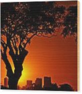 Buenos Aires At Sunset Wood Print