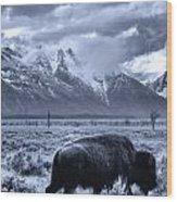 Buffalo And Mountain In Jackson Hole Wood Print
